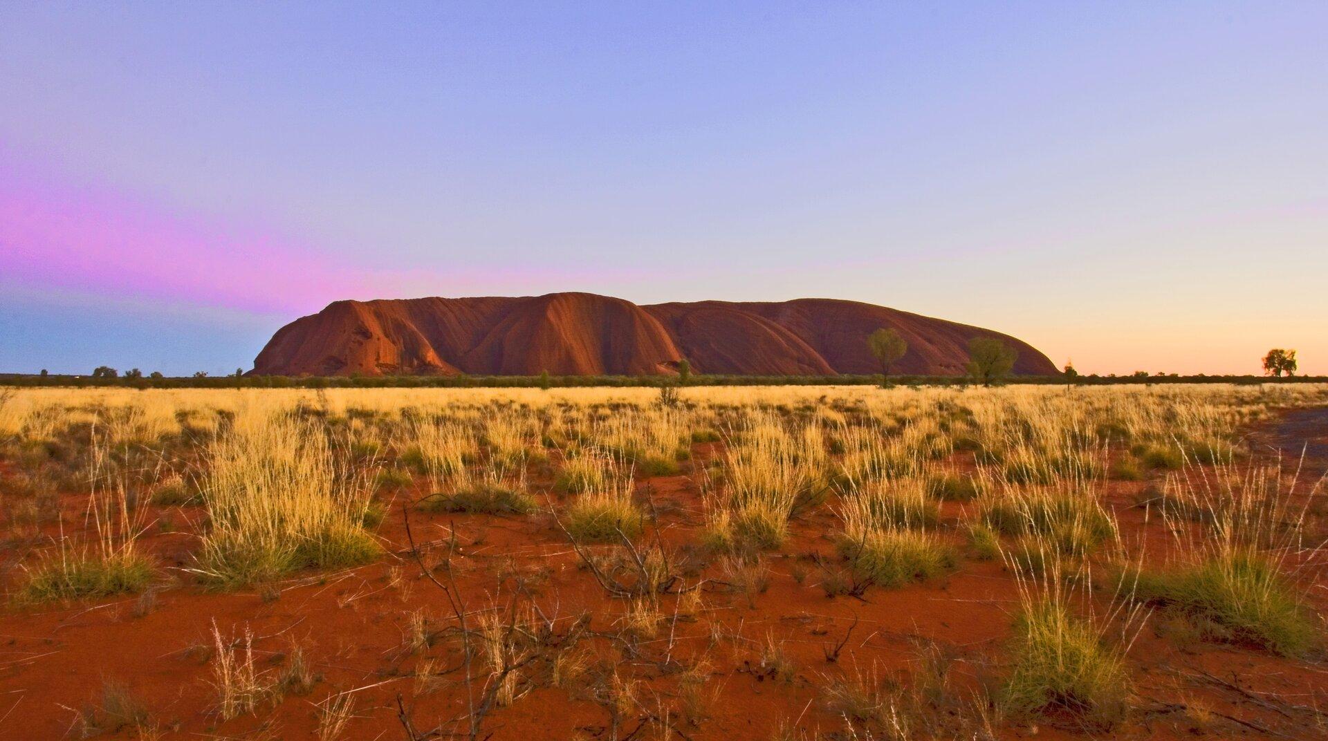 Fotografia prezentuje dużą otwartą przestrzeń porośniętą żóto-zielonymi kępami trawy. Na środku linii horyzontu znajduje się olbrzymia skała koloru brązowoczerwonego.