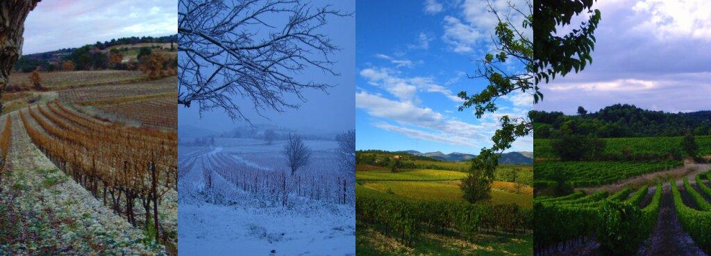 Cztery pory roku: jesień, zima, wiosna ilato Cztery pory roku: jesień, zima, wiosna ilato Źródło: leasqueaky, licencja: CC BY-SA 2.0.