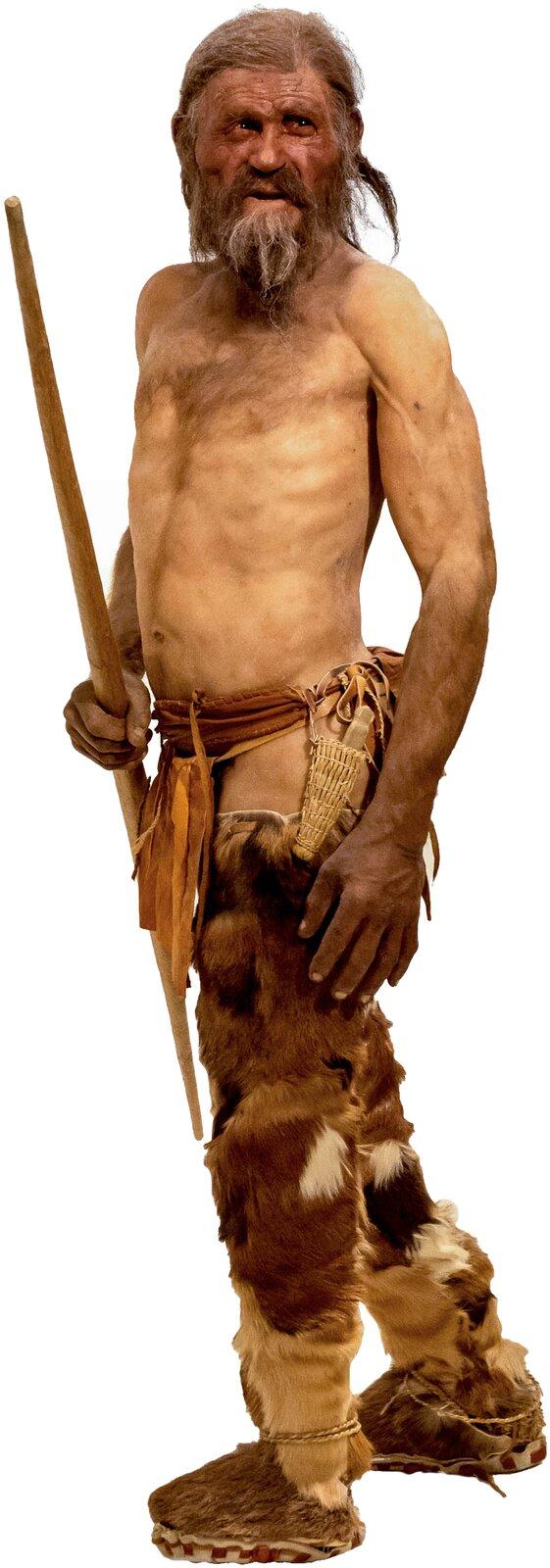 Rekonstrukcja człowieka zÖtzi Rekonstrukcja człowieka zÖtzi Źródło: Thilo Parg, Wikimedia Commons, licencja: CC BY-SA 3.0.