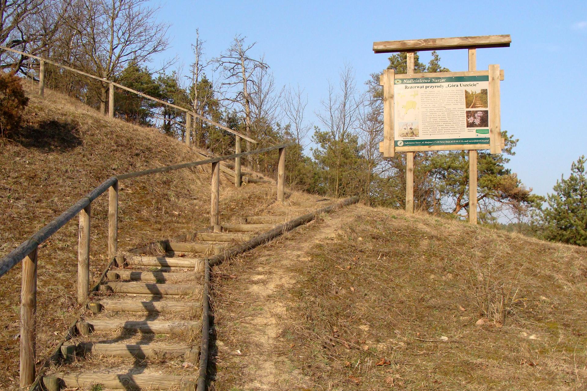 GFotografia przedstawia zbocze góry, porośnięte zeschłą trawą. Po lewej znajdują się drewniane schody. Na zakręcie stoi przy nich drewniana tablica zopisem miejsca. To rezerwat stepowy Góra Uszeście wwojewództwie podlaskim.