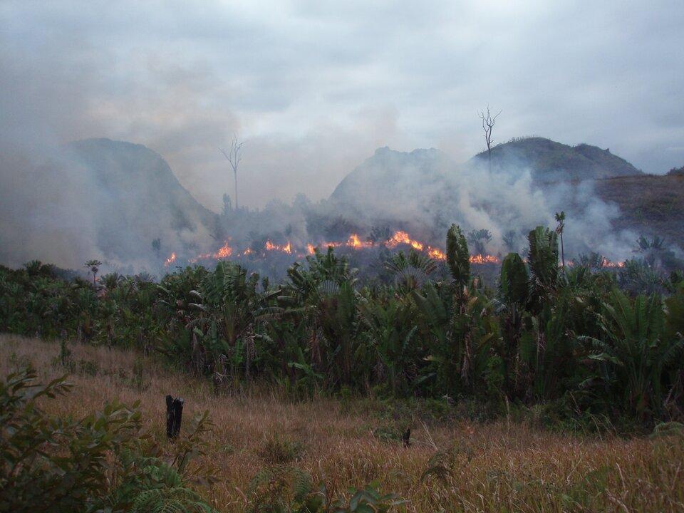 Na zdjęciu wypalanie roślinności, ogień trawi zarośla, wtle góry.