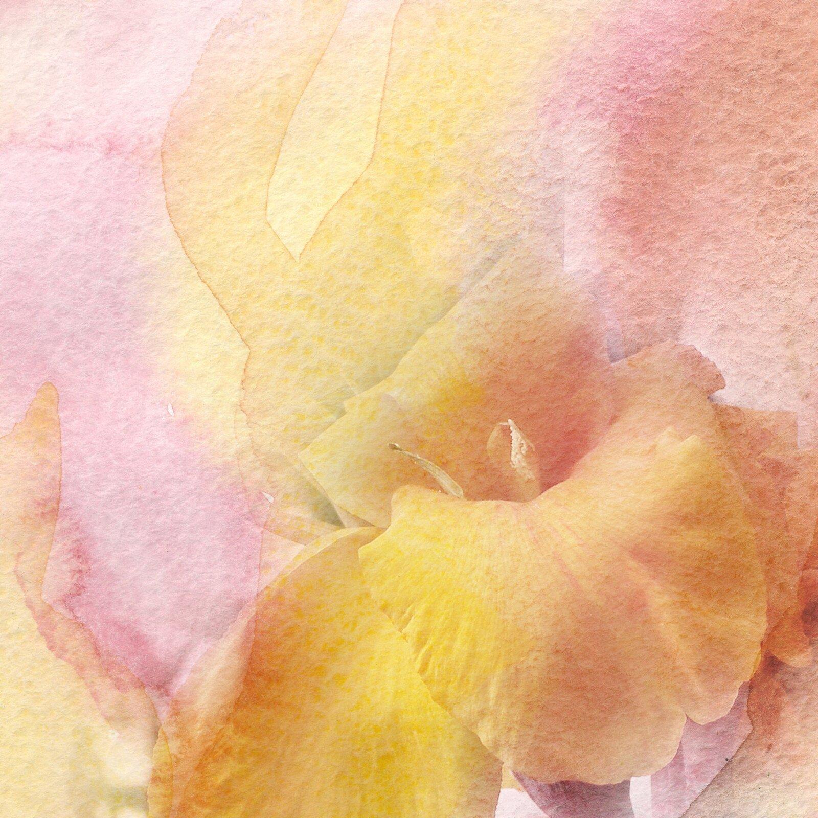 Ilustracja przedstawia akwarelę, ukazującą fragment kwiatu. Żółta roślina została przedstawiona na różowym tle.