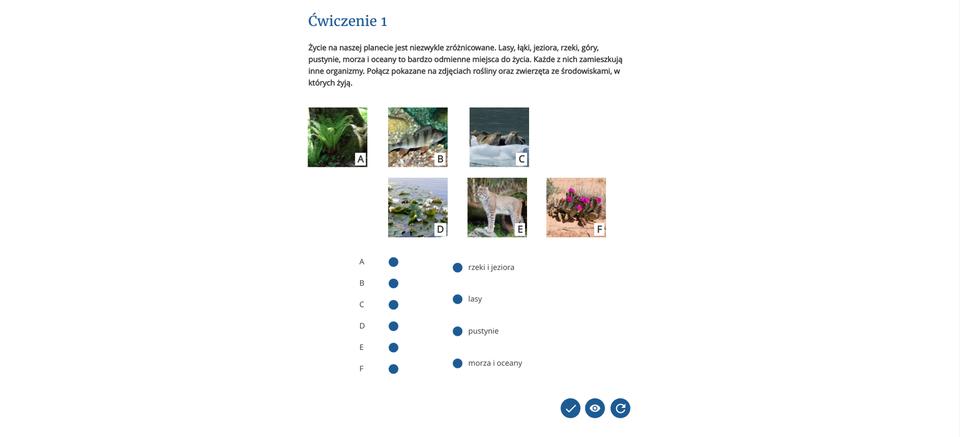 Strona zawierająca interaktywne ćwiczenia multimedialne