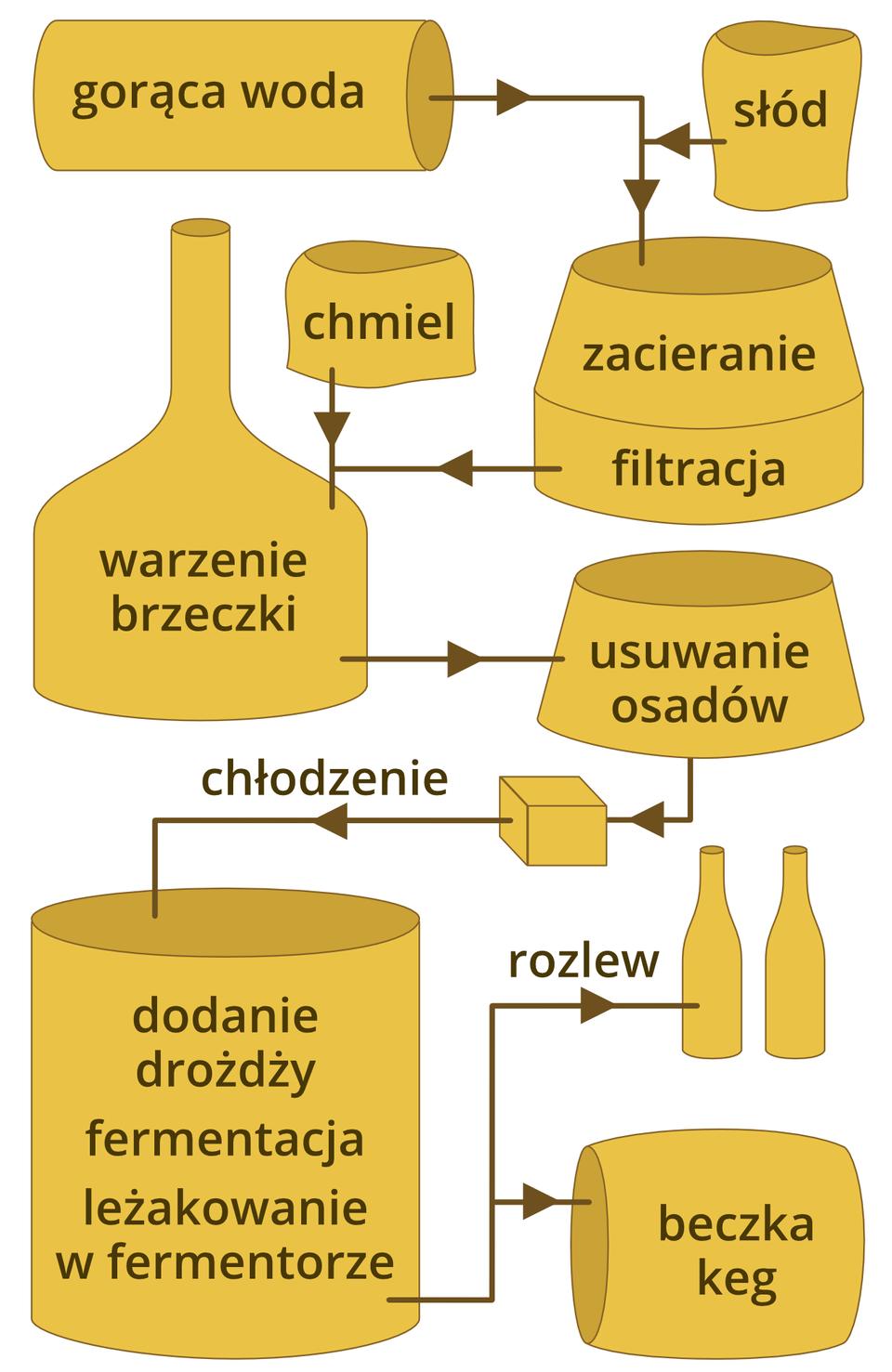 Ilustracja prezdstawia kolejne etapy produkcji piwa