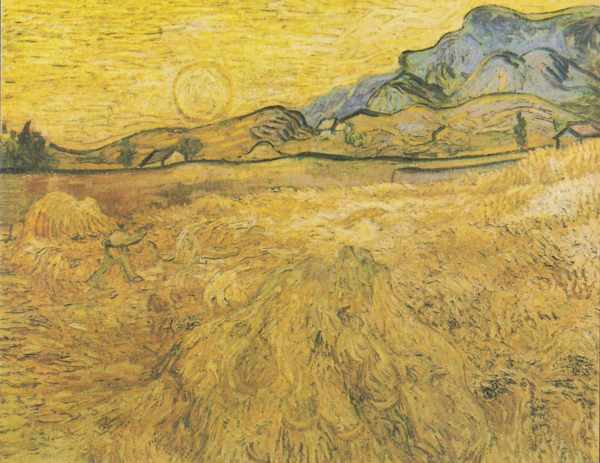 Pole pszenicy wsłońcu Źródło: Vincent van Gogh, Pole pszenicy wsłońcu, 1889, obraz olejny, domena publiczna.
