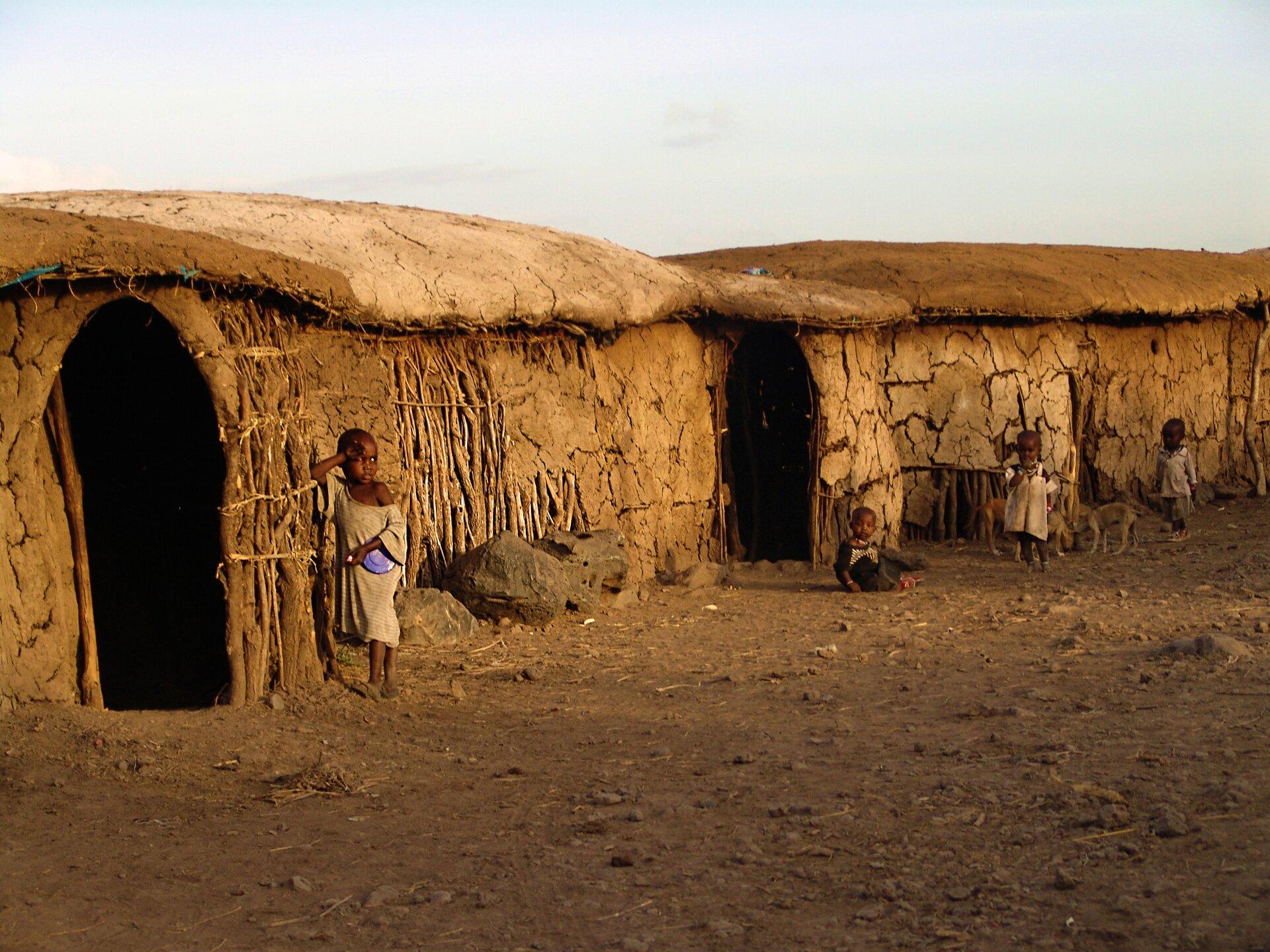 Fotografia prezentuje domy wwiosce masajskiej. Widoczne niskie, brązowe, budynki utworzone zpatyków ibłota. Zprzodu znajdują się wejścia do domów, brak okien idrzwi. Przed budynkami stoją dzieci.