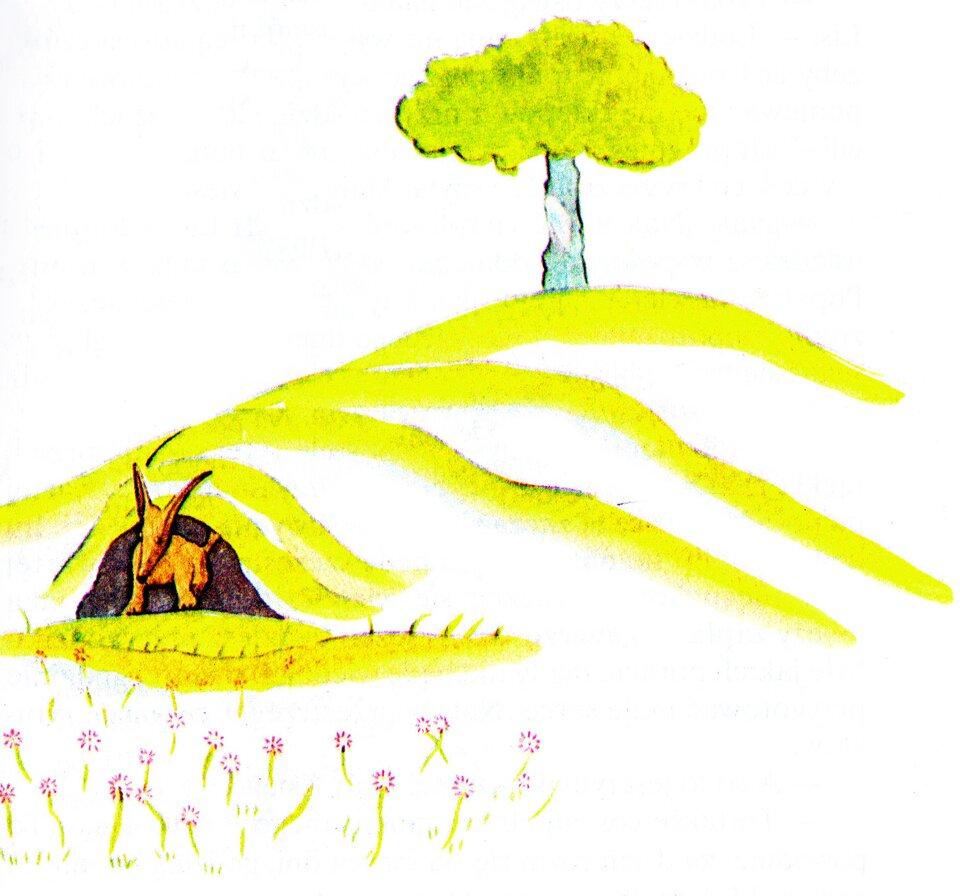 Ilustracja autora Ilustracja autora Źródło: Antoine de Saint-Exupéry, tylko do użytku edukacyjnego.