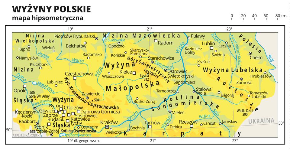 Ilustracja przedstawia mapę hipsometryczną pasa wyżyn wPolsce. Są na niej m.in. Wyżyna Śląska, Wyżyna Krakowsko-Częstochowska, Wyżyna Małopolska, Wyżyna Lubelska iRoztocze. Na mapie dominuje kolor żółty oznaczający wyżyny. Oznaczono iopisano miasta, rzeki, jeziora iszczyty. Opisano niziny, wyżyny , kotliny iinne krainy geograficzne oraz państwa sąsiadujące zPolską. Dookoła mapy wbiałej ramce opisano współrzędne geograficzne co dwa stopnie.