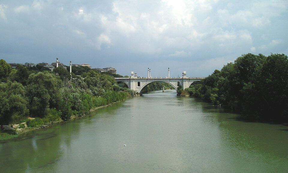 Na zdjęciu rzeka, brzegi porośnięte drzewami, na drugim planie betonowy most. Zlewej strony zabudowania wielorodzinne.