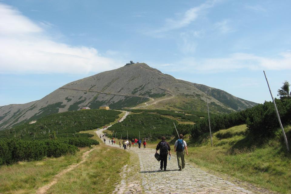 Fotografia prezentuje szlak turystyczny prowadzący na szczyt góry Śnieżki. Szlakiem idą pojedynczo lub wgrupach ludzie. Wzdłuż szlaku rosną niskie drzewa iglaste.