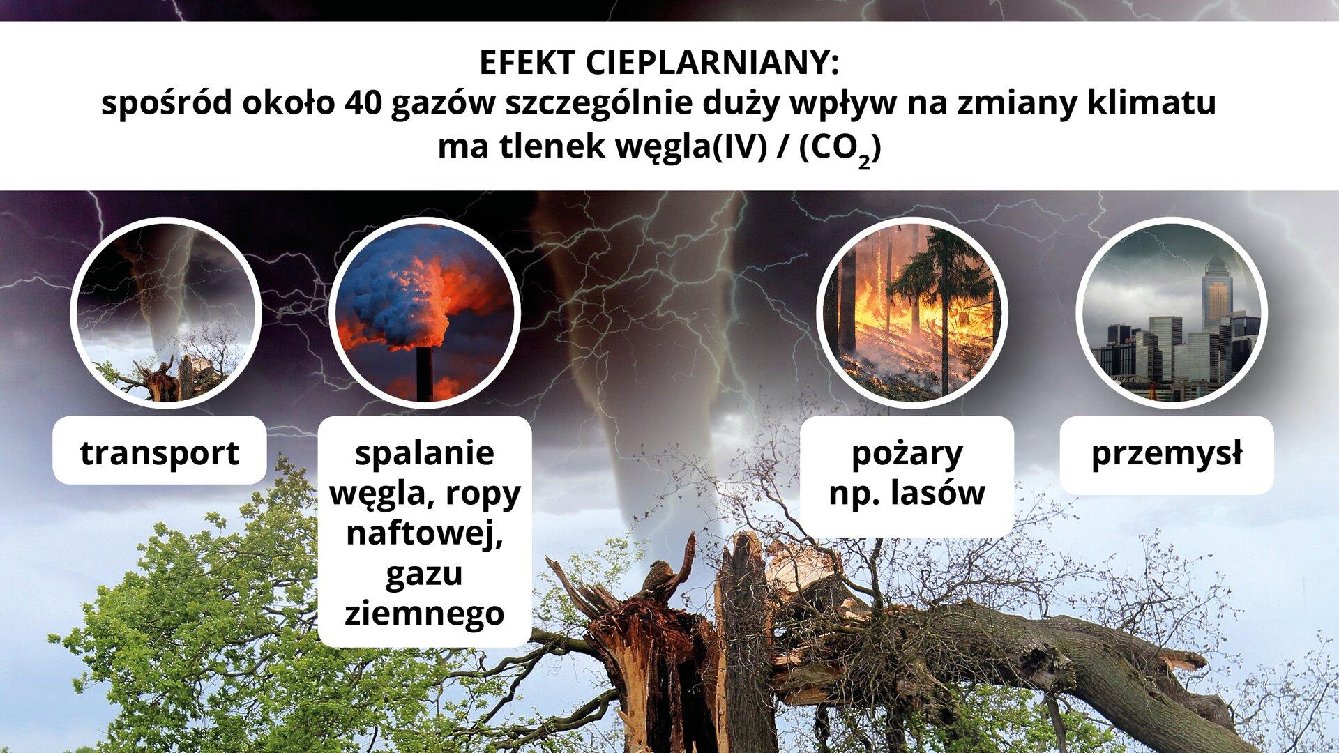 """Ilustracja ma nagłówek: """"Efekt cieplarniany: spośród około czterdziestu gazów szczególnie duży wpływ na zmiany klimatu ma tlenek węgla cztery"""". Poniżej przedstawione jest drzewo złamane na skutek występowania kwaśnych deszczy igwałtownych zmian pogodowych, na przykład występowaniu tornad. Ponadto, na ilustracji znajdują się cztery mniejsze okrągłe ilustracje. Pierwsza ilustracja prezentuje to samo złamane drzewo izawiera podpis: """"transport"""". Druga ilustracja przedstawia fabryczny komin oznaczający proces spalania węgla iropy naftowej. Ilustracja ta zawiera podpis: """"spalanie węgla, ropy naftowej, gazu ziemnego"""". Trzecia ilustracja przedstawia pożar lasu izawiera napis: """"pożary na przykład lasów"""". Czwarta ilustracja przedstawia przemysłową część dużego miasta zunoszącym się nad budynkami smogiem ipodpis: """"przemysł""""."""
