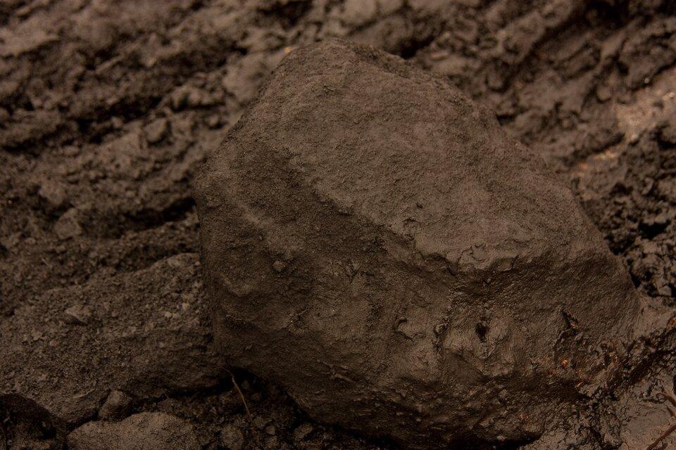 Siódma fotografia prezentuje brunatną bryłkę węgla brunatnego.