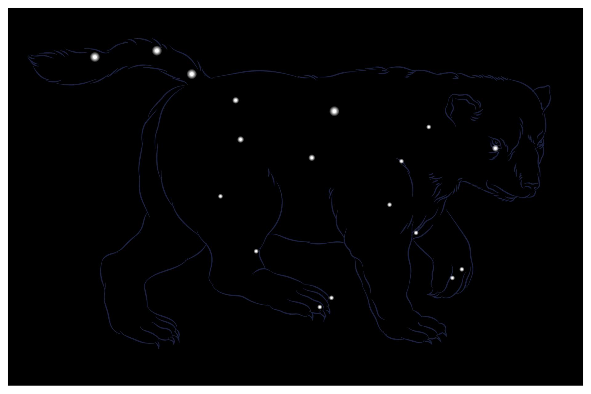 Ilustracja pokazuje gwiazdozbiór Wielkiej Niedźwiedzicy. Na czarnym tle widoczne białe punkty różnej wielkości. Punkty obrysowane są niebieską linią okształcie niedźwiedzia.