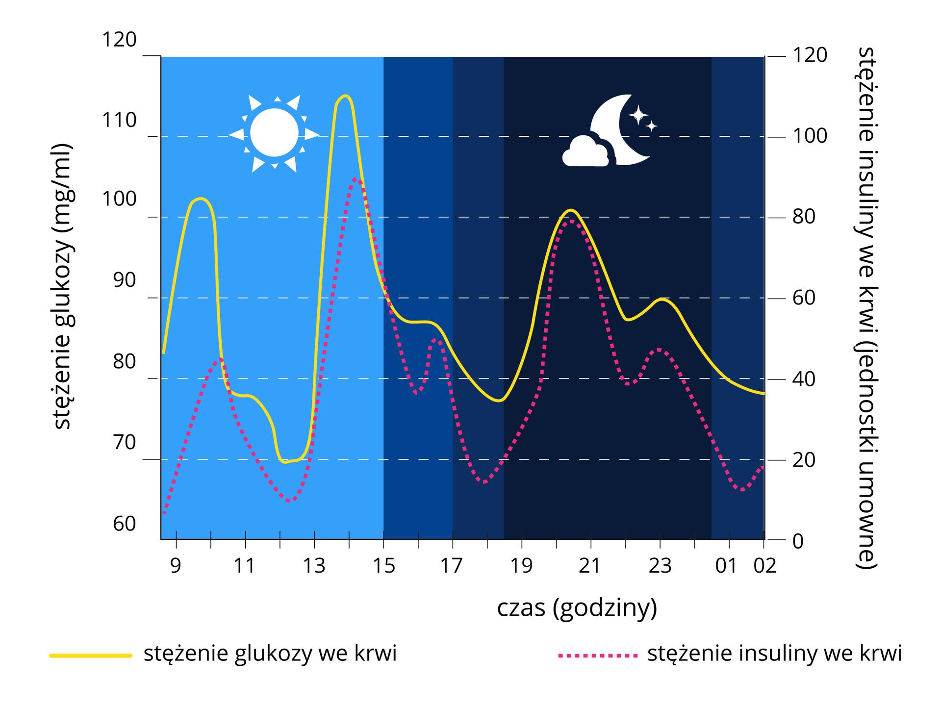 Wykres przedstawia linie na tle niebieskim zsymbolem słońca igranatowym zsymbolem księżyca. Żółta linia oznacza stężenie glukozy we krwi. Różowa kropkowana linia oznacza stężenie insuliny we krwi. Na osi Xczas wgodzinach. Na osi Yzlewej stężenie glukozy wmiligramach na mililitr, od 60 do 120. Zprawej skala stężenia glukozy we krwi wjednostkach umownych od 0 do 120.