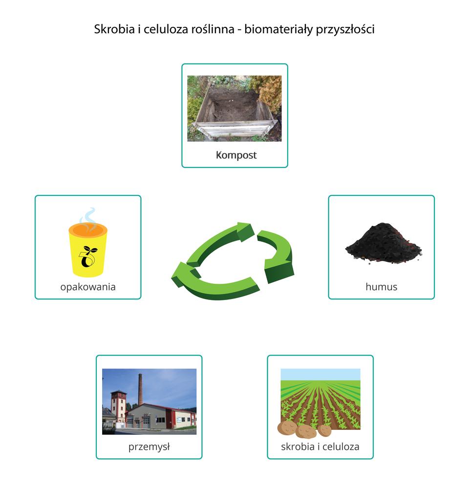 Skrobia iceluloza - biomateriały przyszłości
