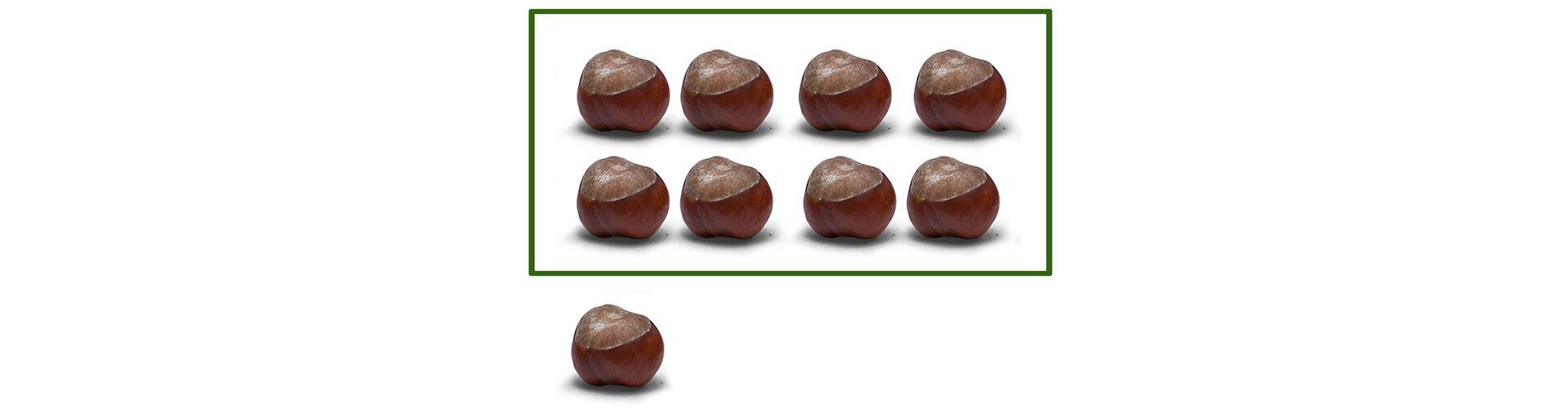 Na rysunku 9 kasztanów. Podzielono je na 2 rzędy po cztery kasztany wkażdym. Został 1 kasztan.