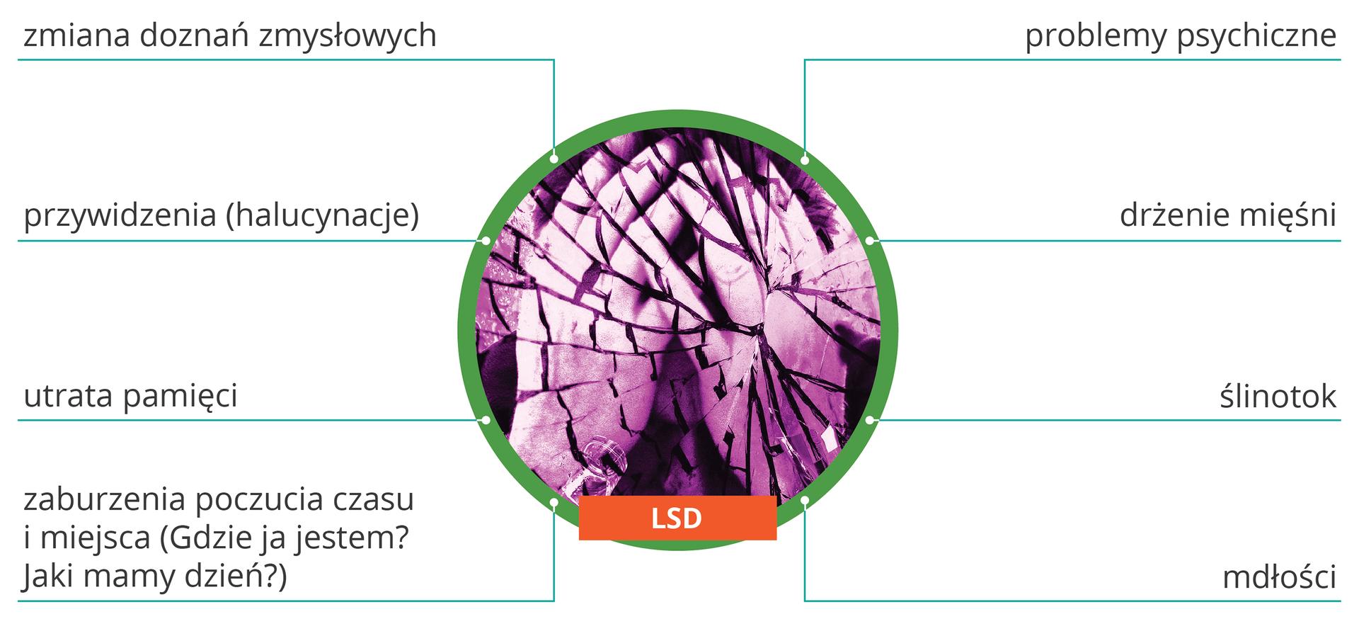 Ilustracja przedstawia różne skutki wpwu LSD na organizm: zmiana doznań zmysłowych, przywidzenia (halucynacje), zaburzenia poczucia czasu imiejsca ( gdzie ja jestem? Jaki mamy dzień?), utrata pamięci, problemy psychiczne, drżenie mięśni, ślinotok, mdłości.