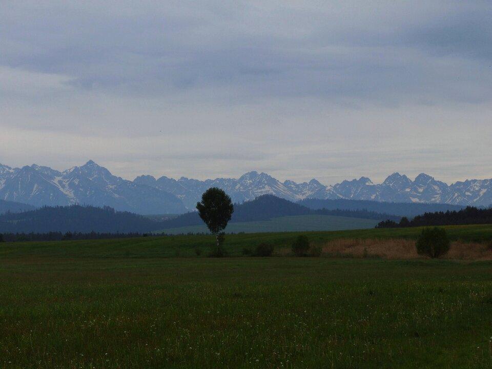 Na zdjęciu na pierwszym planie płaska równina, wtle wysokie, ośnieżone, skaliste szczyty.