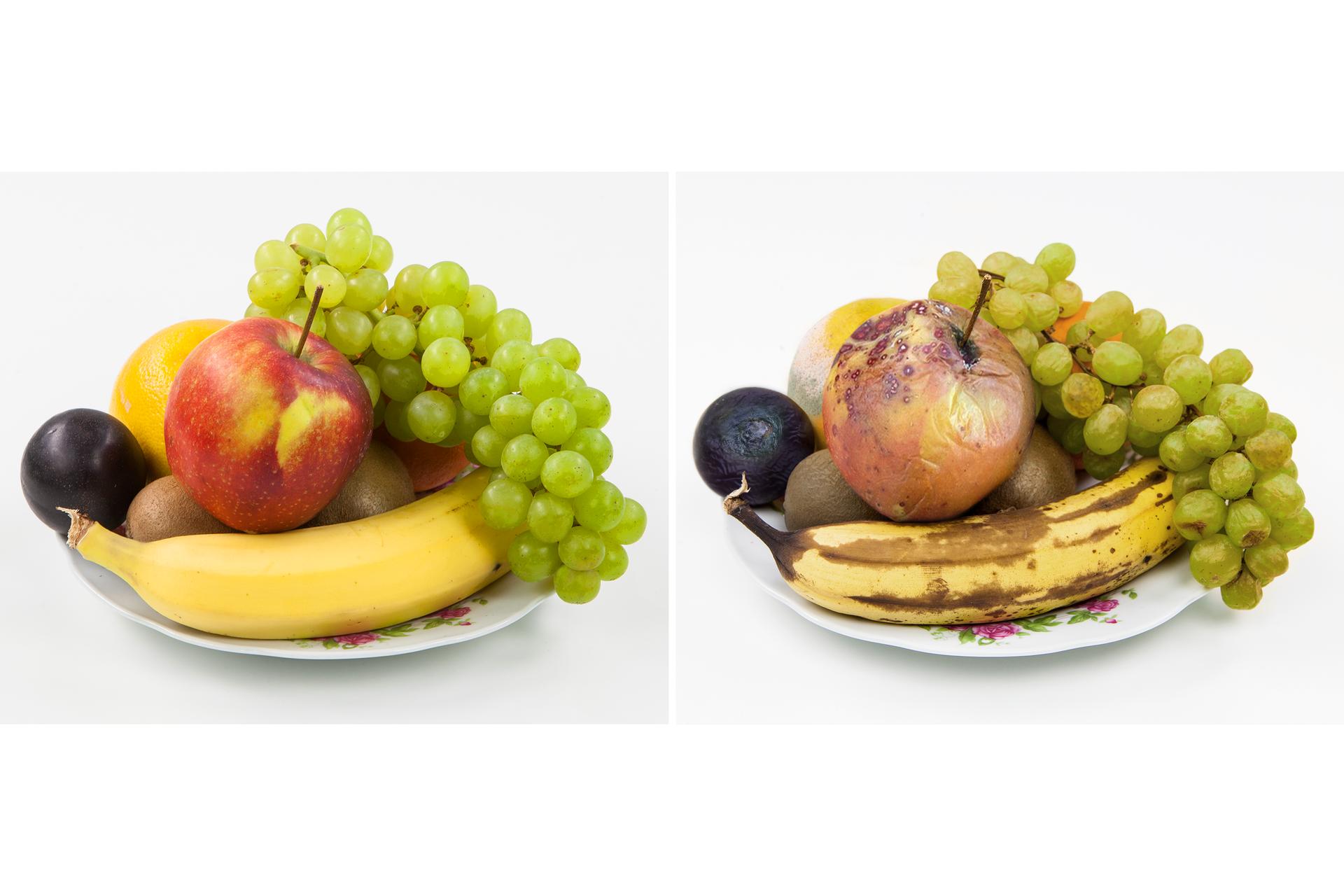 Ilustracja prezentuje dwa zdjęcia umieszczone obok siebie. Na zdjęciu zlewej prezentowany jest talerz ze świeżymi owocami. Jest tam banan, winogrona, śliwka, kiwi ipomarańcza. Na zdjęciu zprawej ten sam talerz ite same owoce, ale jakiś czas później. Wszystkie owoce są wyraźnie nadpsute.