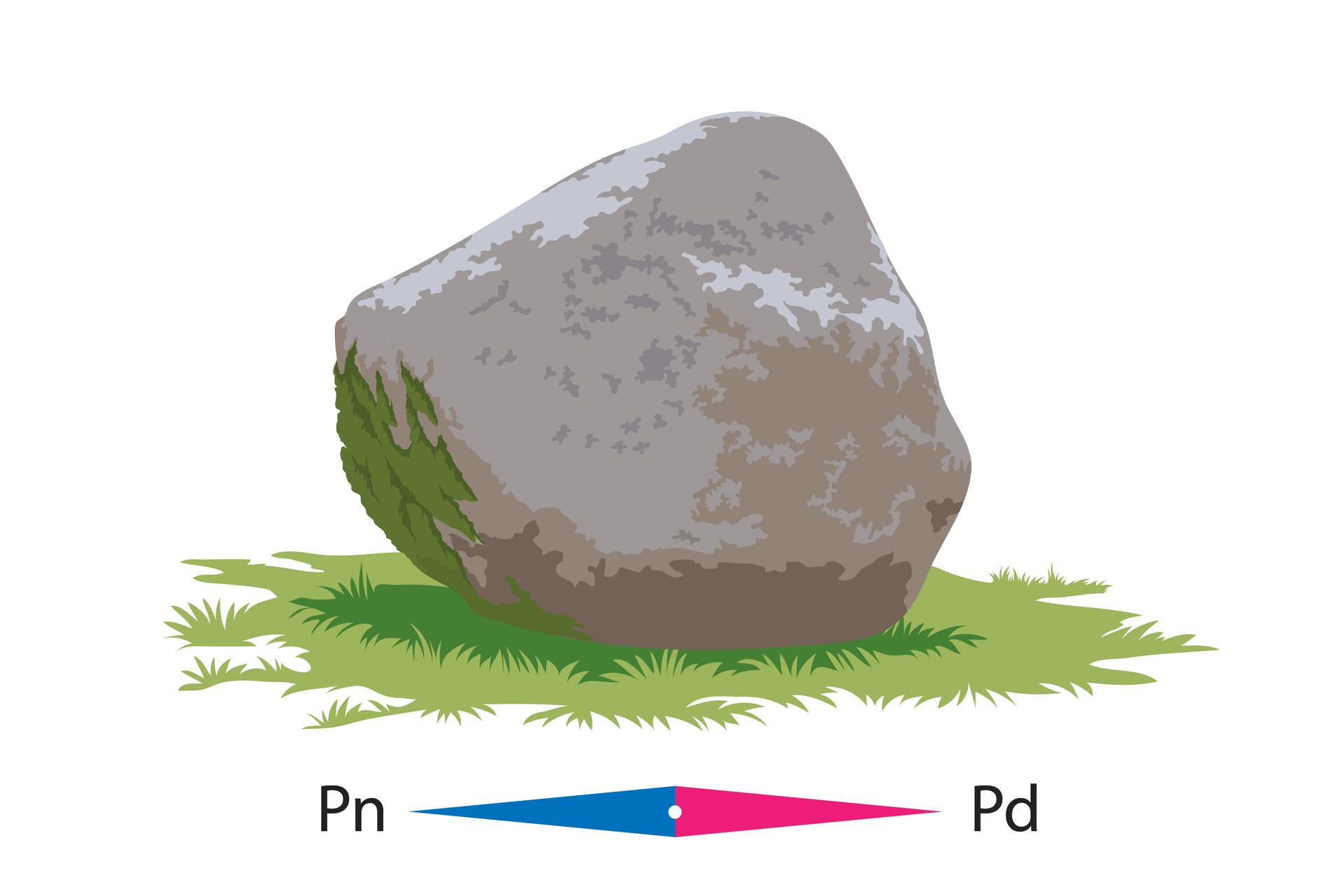 Na ilustracji pokazano głaz, którego strona północna jest porośnięta mchem.