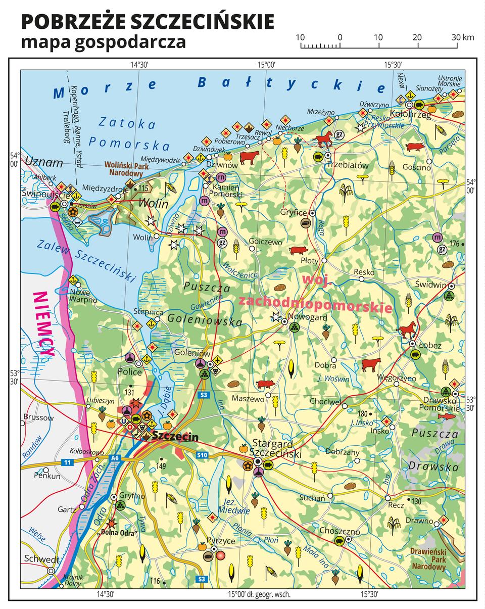 Ilustracja przedstawia mapę gospodarczą Pobrzeża Szczecińskiego. Tło mapy wkolorze żółtym (grunty orne), jasnozielonym (łąki ipastwiska) izielonym (lasy). Na mapie sygnatury obrazujące uprawy poszczególnych roślin, hodowlę zwierząt, przemysł, górnictwo ienergetykę, komunikację, turystykę, naukę, kulturę isztukę. Na północy Morze Bałtyckie, Zatoka Pomorska iZalew Szczeciński. Mapa obejmuje tereny od Świnoujścia iSzczecina na zachodzie po Kołobrzeg iDrawsko Pomorskie na wschodzie. Miejscowości nadmorskie oznaczone sygnaturą turystyki wypoczynkowej. Największe zagęszczenie sygnatur wSzczecinie, duże zagęszczenie sygnatur wŚwinoujściu, Goleniowie, Stargardzie Szczecińskim iKołobrzegu. Na wyspie Wolin elektrownie wiatrowe. Na mapie przedstawiono sieć dróg ikolei, porty wodne ilotnicze, granicę państwa. Opisano województwo zachodniopomorskie iNiemcy. Mapa zawiera południki irównoleżniki, dookoła mapy wbiałej ramce opisano współrzędne geograficzne co trzydzieści minut.