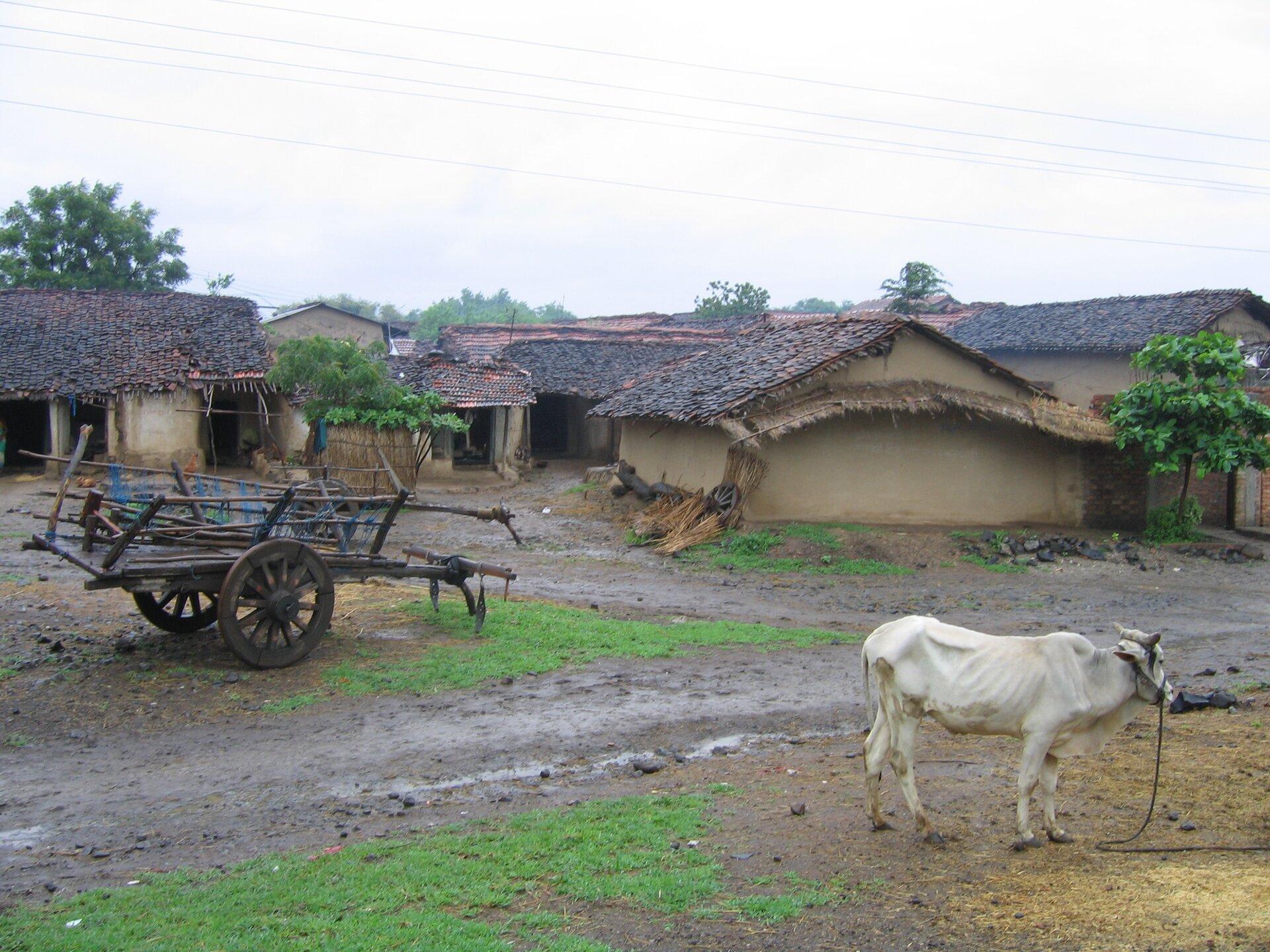 Na zdjęciu skromne wiejskie zabudowania, przed nimi drewniany dwukołowy wóz ikrowa. Mokro, błotnista droga.
