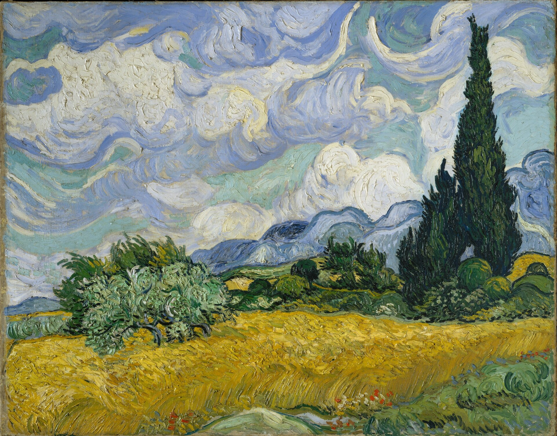 """Ilustracja przedstawia obraz olejny """"Pole pszenicy"""" autorstwa Vincenta van Gogha. Dzieło ukazuje pole dojrzałej pszenicy zcyprysami po prawej stronie. Obraz skomponowany jest wpoziomych, falujących plamach barwnych. Na pierwszym planie znajduje się złoto-żółty łan pszenicy, dalej pas jasno-zielonych krzewów zktórych wyłania się jedyny pionowy element obrazu: ciemne, zielone cyprysy. Na dalszym planie faluje szaro-niebieski horyzont. Nad pejzażem unoszą się skłębione, błękitno-niebiesko-białe pasma chmur. Farba kładziona grubo, wąskimi, falującymi pociągnięciami."""