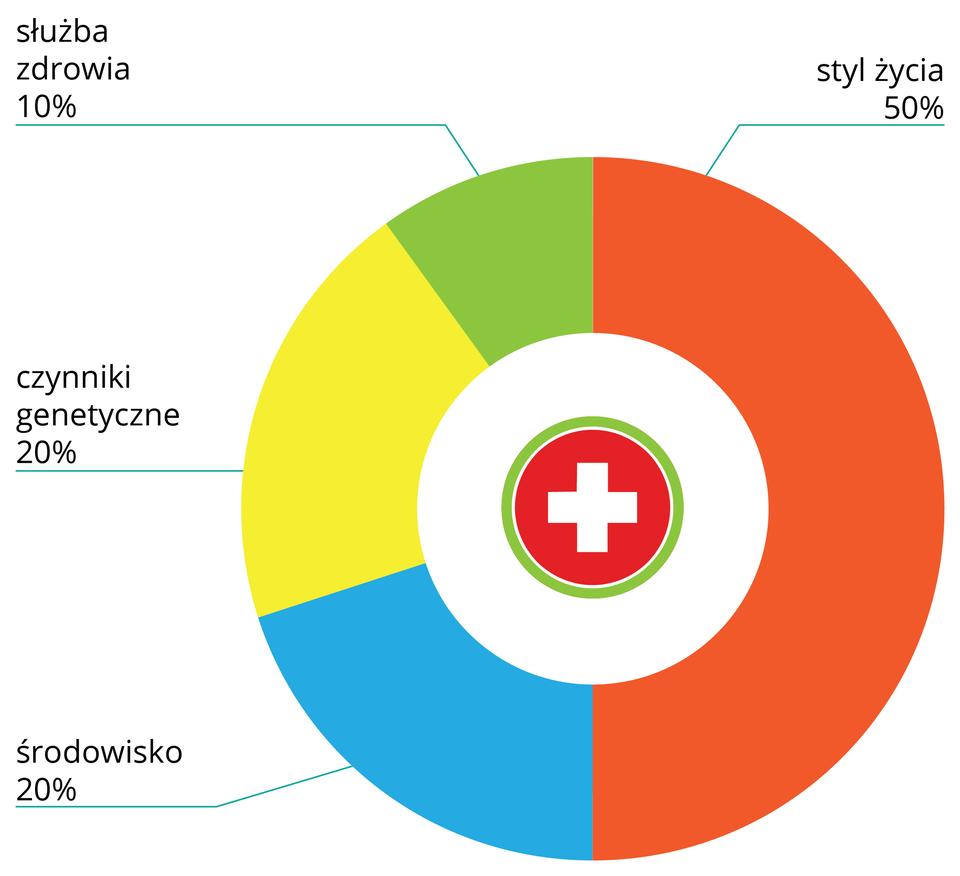 Ilustracja przedstawia diagram pierścieniowy. Kolorami zaznaczono czynniki warunkujące zdrowie iich wpływ na jakość życia wyrażony wprocentach. Wewnątrz diagramu symbol krzyża medycznego na czerwonym tle. Kolor czerwony oznacza styl życia. Od dołu wlewą stronę kolejno: niebieski wpływ środowiska (20 procent), żółty czynniki genetyczne (20 procent), zielony służbę zdrowia (10 procent).