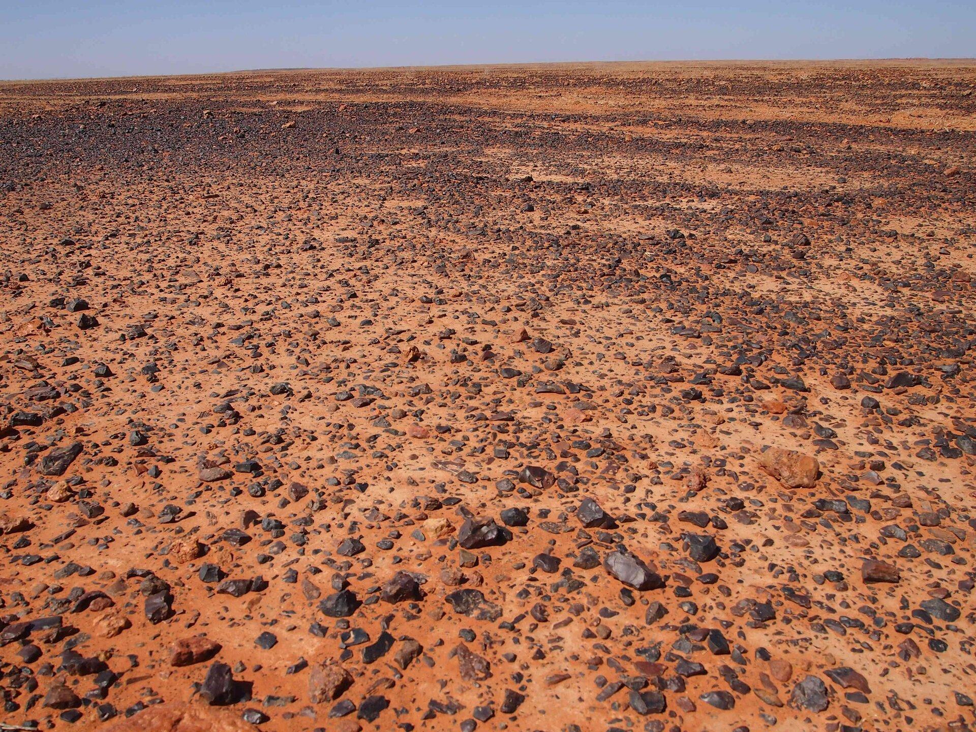 Na zdjęciu pustynia żwirowa. Teren płaski, na ceglastym piasku leży drobny igrubszy żwir. Na horyzoncie wąski kawałek nieba.
