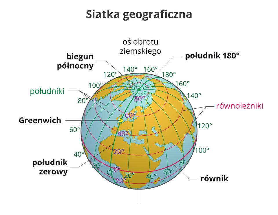 Ilustracja przedstawia kulę ziemską biegunem północnym skierowaną wstronę obserwatora. Wokół kuli narysowane są pionowe ipoziome linie. Linie tworzą okręgi narysowane na kuli ziemskiej. Linie poziome są ułożone względem siebie równolegle isą to równoleżniki. Pogrubiony równoleżnik opasający Ziemię wjej najgrubszym miejscu to równik. Dzieli on kulę ziemską na dwie jednakowe półkule – północną ipołudniową. Układ linii pionowych to południki. Biegną one od bieguna północnego do bieguna południowego isą prostopadłe do równoleżników, tworzą półokręgi. Pogrubiona linia to południk zerowy. Przechodzi przez zaznaczoną na kuli miejscowość Greenwich. Miejscowość ta leży wAnglii. Południk zerowy isto osiemdziesiąty dzielą Ziemię na dwie półkule – wschodnią izachodnią. Południki irównoleżniki tworzą na kuli siatkę geograficzną. Wzdłuż południka zerowego irównika jest umieszczony opis siatki. Liczby opisujące siatkę wyrażone są wstopniach irozmieszczone co dwadzieścia stopni. Pionowa linia łącząca bieguny, poprowadzona przez środek wewnątrz kuli ziemskiej to oś obrotu ziemskiego. Widoczny iopisany jest biegun północny. Biegun południowy znajdujący się pod spodem kuli jest niewidoczny dla obserwatora.