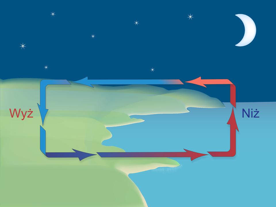 """Ilustracja przedstawia brzeg morza wnocy. Na lewo teren na zielono. Na prawo niebieskie morze. Na pierwszym planie strzałki ułożone wkształcie prostokąta wskazują kierunek cyrkulacji powietrza. Groty strzałek skierowane przeciwnie do ruchu wskazówek zegara. Na lewo od strzałek nad lądem napis """"wyż"""" istrzałki wkolorze niebieskim. Po prawej stronie nad morzem opisano """"niż"""". Strzałki nad morzem wkolorze czerwonym."""