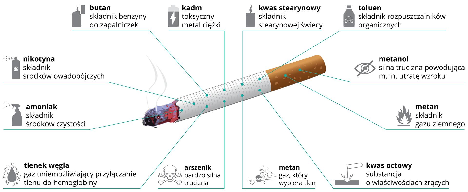 Ilustracja przedstawia ukosem żarzący się biały papieros zpomarańczowym ustnikiem. Od niego niebieskie linie prowadzą do opisu iobrazka przykładowych substancji, zawartych wdymie papierosowym. Od góry od lewej: butan, kadm, kwas stearynowy, toluen, metanol, metan, kwas octowy, arszenik, tlenek węgla, amoniak, nikotyna.