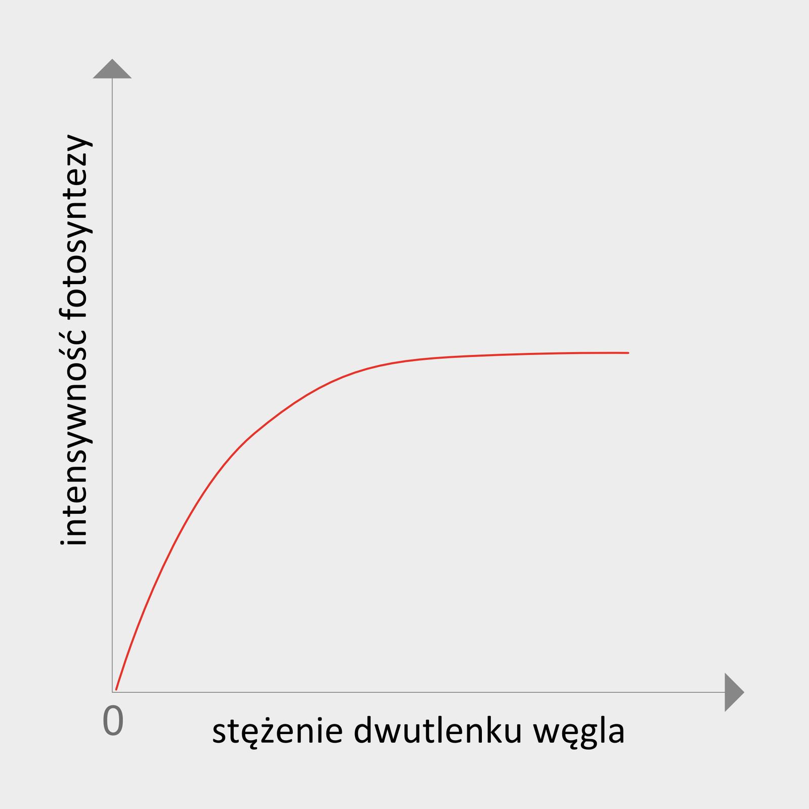 Ilustracja przedstawia wykres, na którym oś Xpodpisano jako stężenie dwutlenku węgla, aoś Yjako intensywność fotosyntezy. Czerwona linia wznosi się od zera do pewnego poziomu, wskazując tempo przebiegu fotosyntezy.
