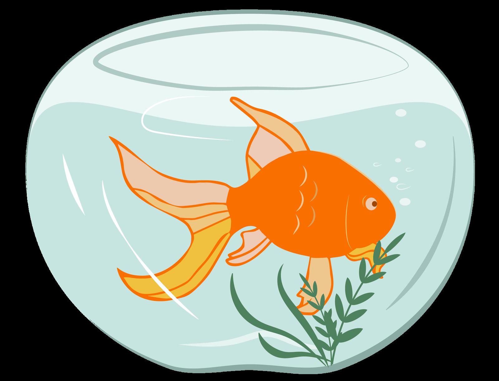 Rysunek - wkulistym akwarium pływa pomarańczowa rybka . Zpyska wylatują jej bańki powietrza, zdna wyrasta roślina.