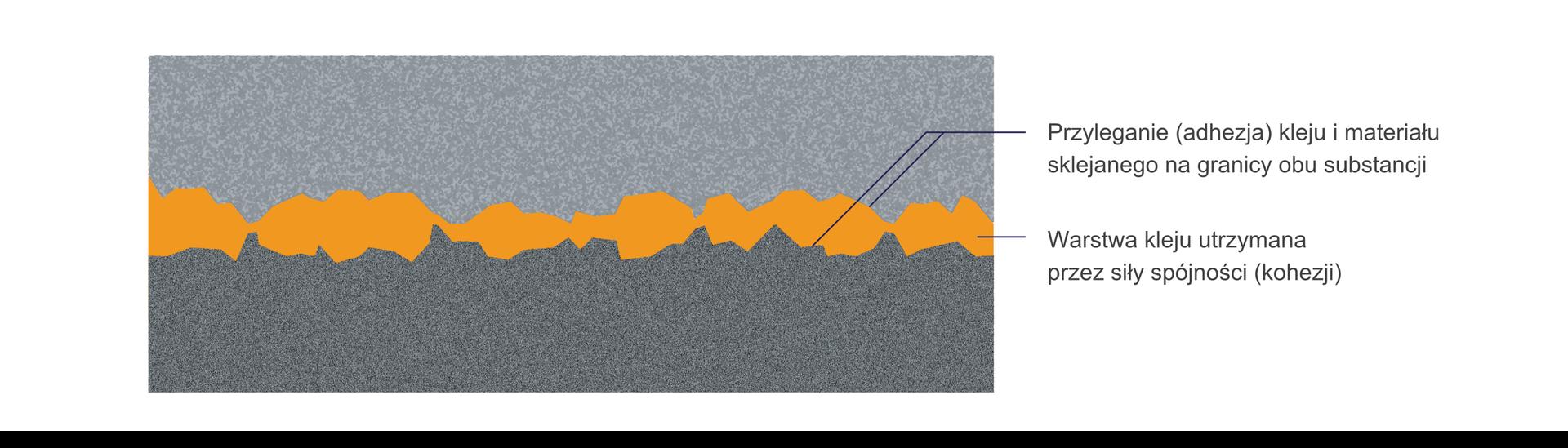 """Ilustracja przedstawia warstwę kleju. Schemat poziomy. Górna część schematu jasnoszara. Dolna część ciemnoszara. Przez środek, poziomo przebiega warstwa kleju. Klej żółto-pomarańczowy. Linia ciągła, bardzo nieregularna. Przechodzi przez całą długość schematu. Miejscami bardzo wąska (około 1 milimetr) lub bardzo szeroka (około 10 milimetrów). Wprawej strony schematu znajdują się opisy. Środkowa część żółto-pomarańczowej linii opisana jako """"Warstwa kleju utrzymana przez ziły spójności (kohezji)"""". Linie warstwy kleju graniczące zjasnoszarą częścią schematu (górną) izciemnoszarą częścią (dolną) opisane jako: """"Przyleganie (adhezja) kleju imateriału sklejanego na granicy obu substancji""""."""
