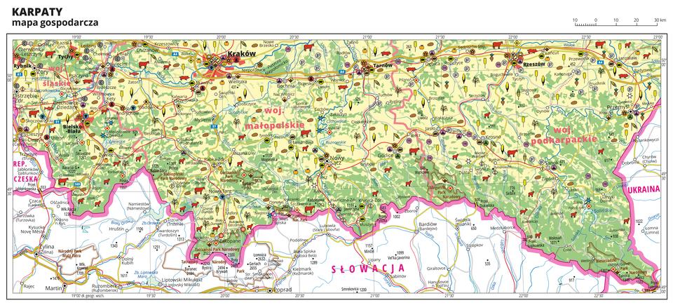 Ilustracja przedstawia mapę gospodarczą Karpat. Tło mapy wkolorze żółtym (grunty orne), jasnozielonym (łąki ipastwiska) izielonym (lasy). Mapa obejmuje tereny od Rybnika iCieszyna na zachodzie po Przemyśl na wschodzie. Na południu mapy przebiega granica Polski. Na mapie sygnatury obrazujące uprawy poszczególnych roślin, hodowlę zwierząt, przemysł, górnictwo ienergetykę, komunikację, turystykę, naukę, kulturę isztukę. Największe zagęszczenie sygnatur wKrakowie. Duże zagęszczenie sygnatur wTarnowie, Rzeszowie, Bielsku-Białej iPrzemyślu. Na obszarze całej mapy rozmieszczone sygnatury hodowli iupraw. Na mapie przedstawiono sieć dróg ikolei, porty wodne ilotnicze, granice województw, granicę państwa. Opisano województwa śląskie, małopolskie ipodkarpackie. Opisano parki narodowe. Opisano Republikę Czeską, Słowację iUkrainę. Mapa zawiera południki irównoleżniki, dookoła mapy wbiałej ramce opisano współrzędne geograficzne co trzydzieści minut.