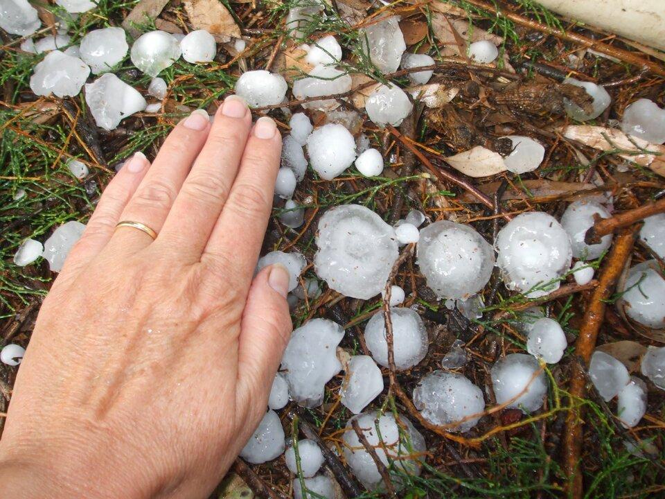 Zdjęcie przedstawia kule gradowe różnej wielkości. Po lewej stronie zdjęcia jest otwarta dłoń dorosłego człowieka. Po prawej stronie leżą bryłki lodu, kule gradowe. Kształt bryłek jest różny. Są kule owalne, okrągłe oraz onierównych brzegach. Wielkość bryłek lodu można porównać zdłonią. Największe bryłki są tak duże jak mały palec dłoni. Średnica największej kuli lodowej to około pięć centymetrów. Mniejsze mają wielkość połowy małego palca. Średnica mniejszych kul sięga od pięciu milimetrów do dwóch centymetrów. Kule gradowe są zbudowane znieprzeźroczystego lodu.