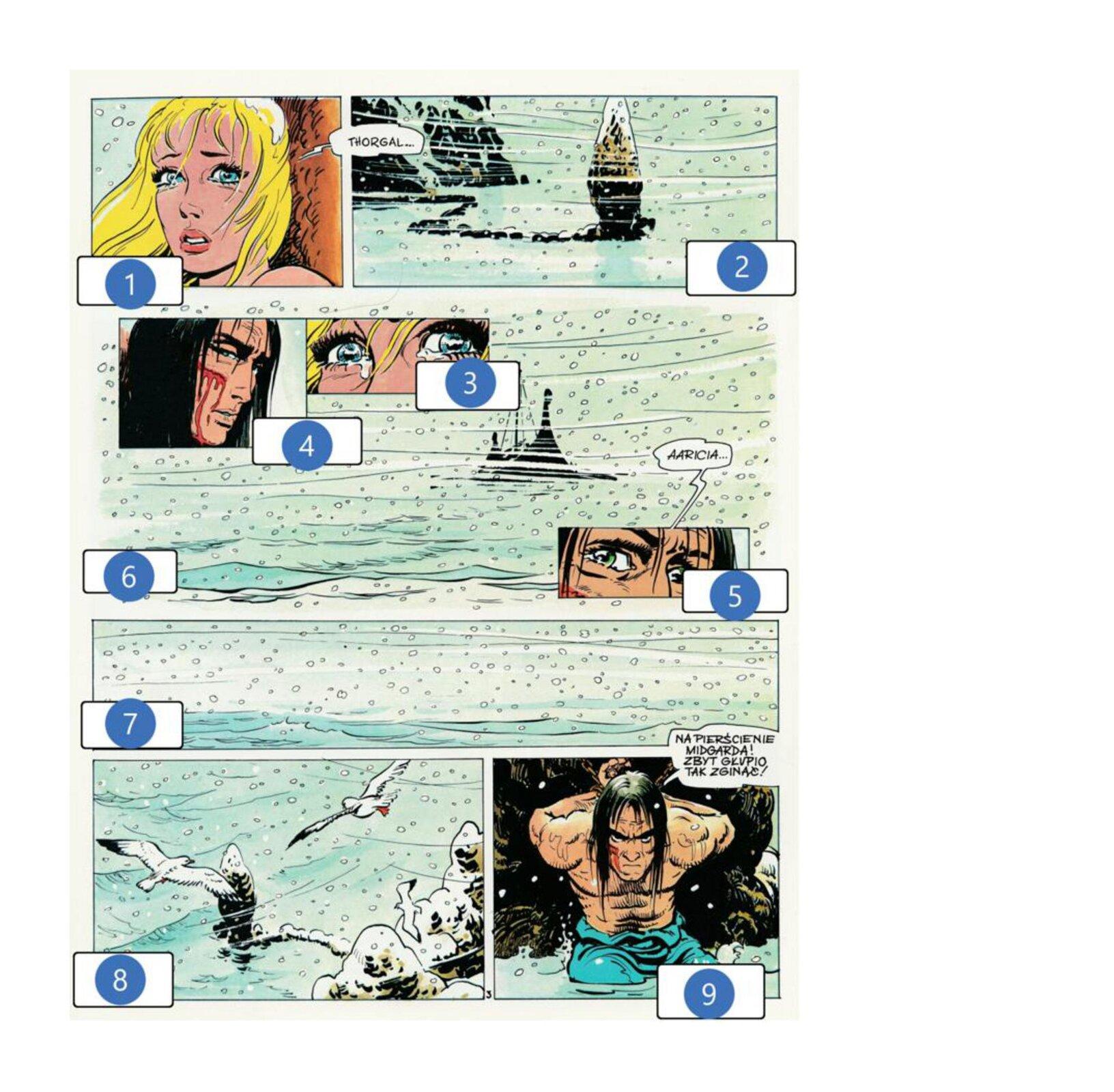 Wzadaniu została wykorzystana grafika zkomiksu, która przedstawia stronę zkomiksu Thorgal. Na ilustracji widoczna jest scena rozmowy kobiety zmężczyzną. Oboje znajdują się na dworze, gdzie panuje śnieżyca. Mężczyzna jest zanurzony po kolana wlodowatej wodzie. Woczach kobiety widoczne są łzy.