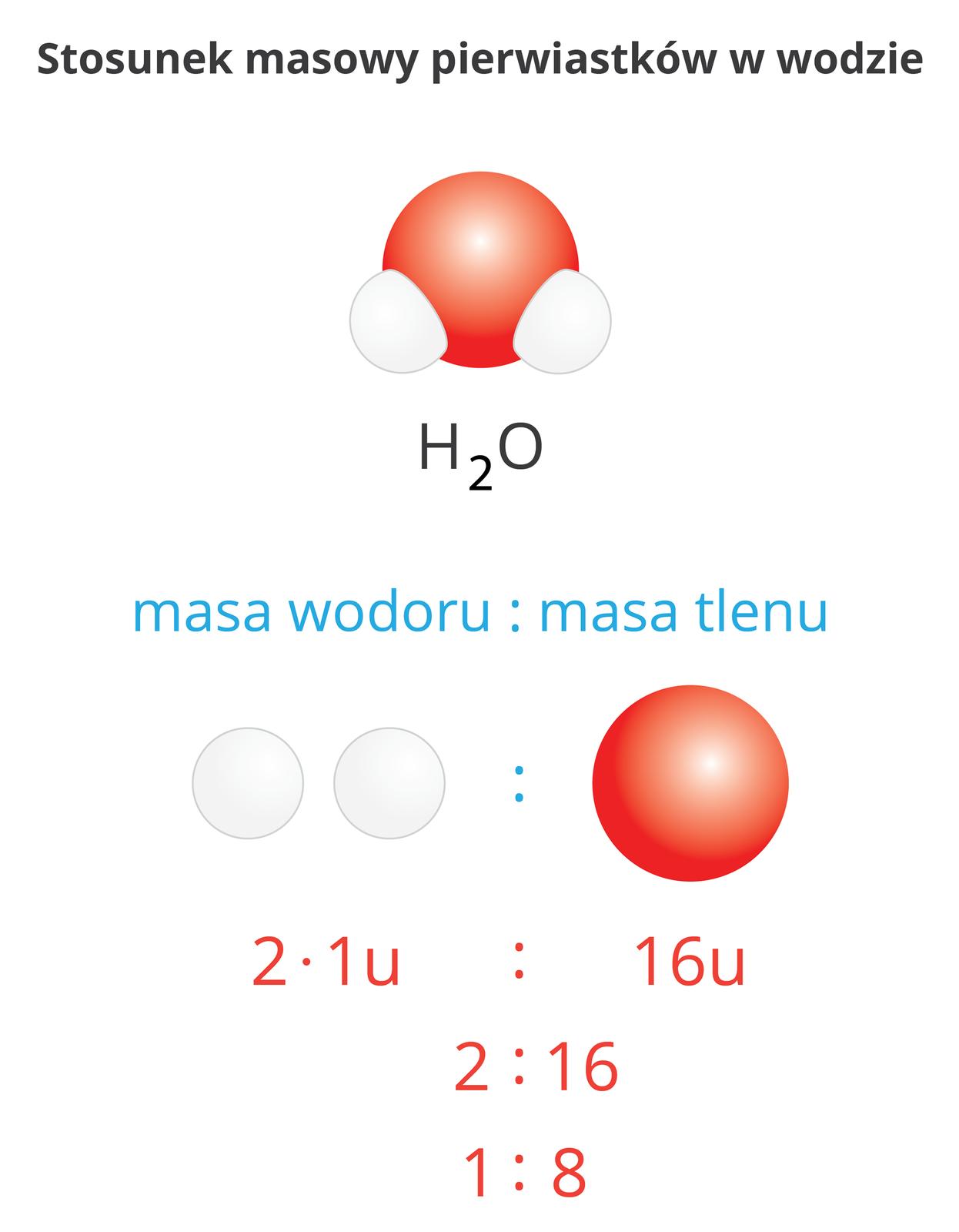 Ilustracja przedstawia obliczanie stosunku masowego pierwiastków dla wody. Wgórnej jej części znajduje się rysunek modelu cząsteczki wody ijej wzór sumaryczny. Poniżej znajduje się wyróżniona kolorem niebieskim informacja, że wprzypadku tej cząsteczki stosunkiem będzie proporcja masy wodoru do masy tlenu. Obliczenia wyglądają następująco: dwa razy jeden unit do szesnastu unitów to proporcja dwa do szesnastu, czyli jeden do ośmiu.