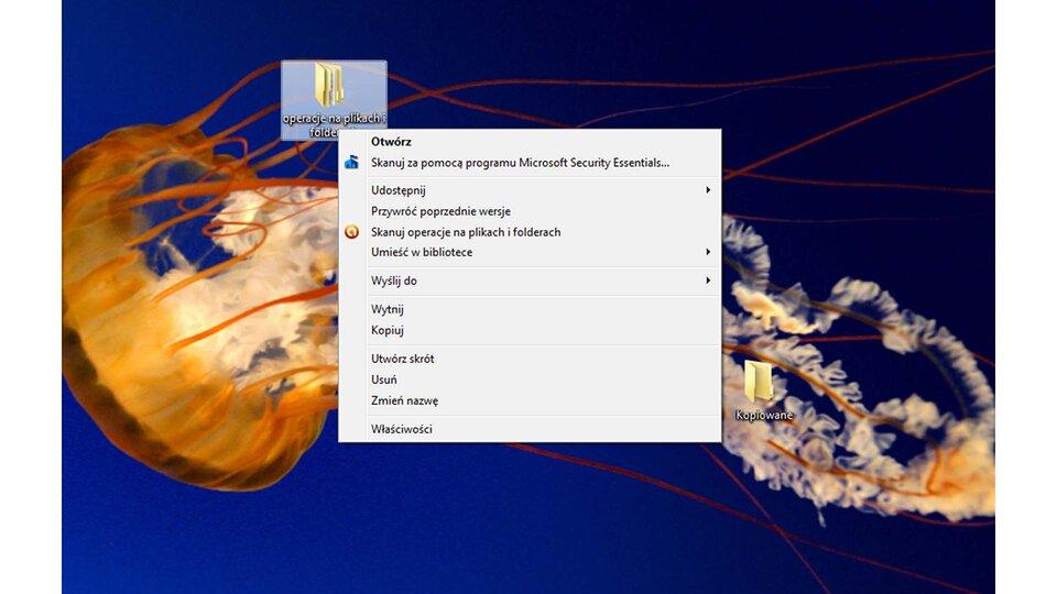 Animacja: Okno właściwości wsystemie Windows