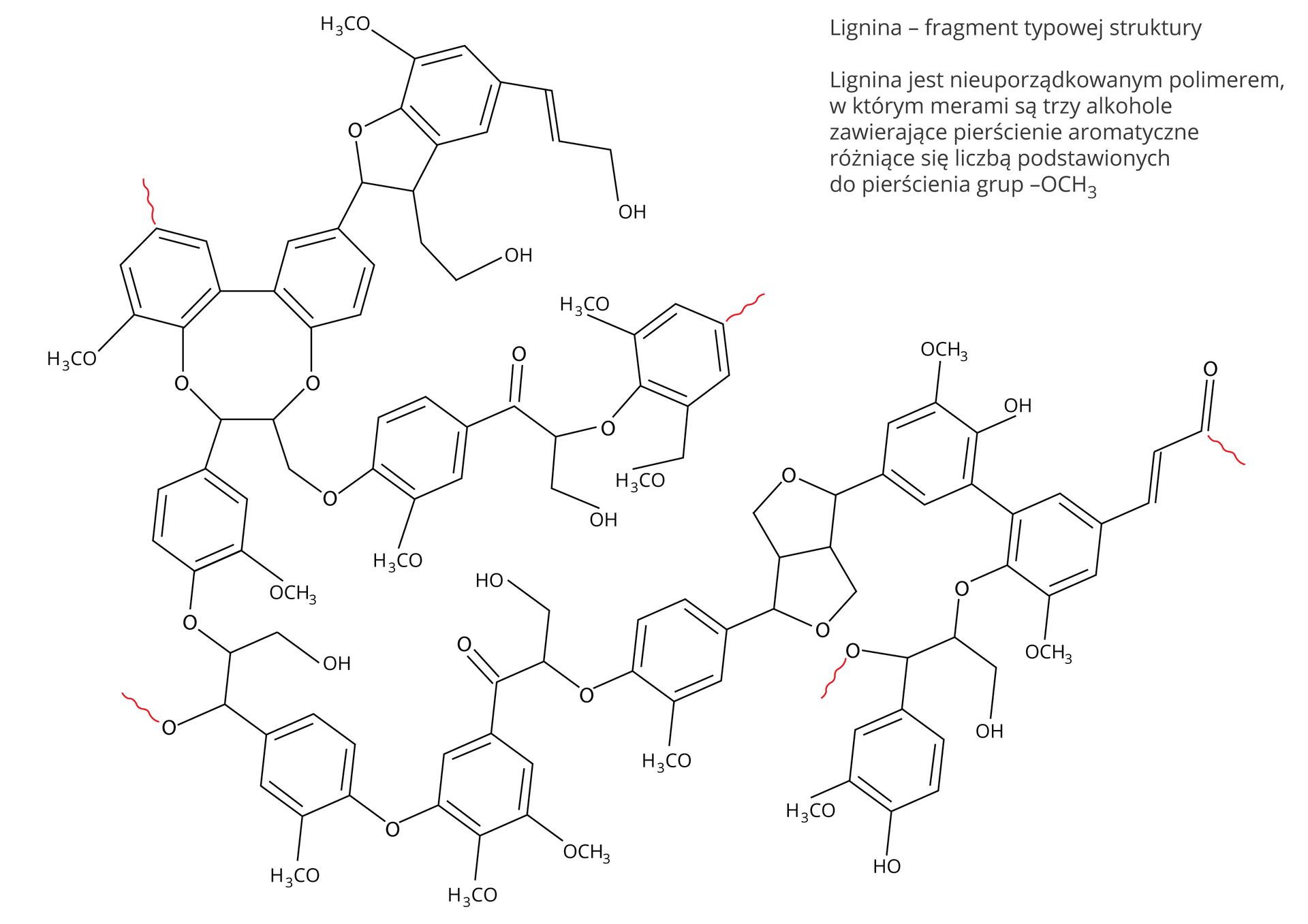 Lignina –fragment typowej struktury. Lignina jest nieuporządkowanym polimerem, wktórym merami są trzy alkohole zawierające pierścienie aromatyczne różniące się liczbą podstawionych do pierścienia grup –OCH3