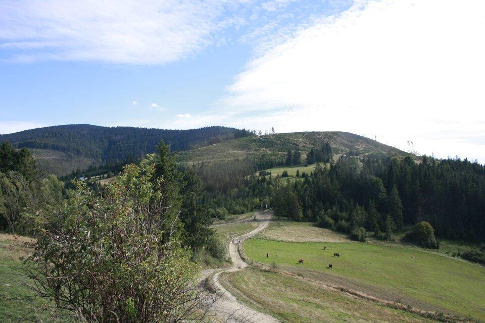 Na zdjęciu pastwiska ilasy wterenie górzystym.