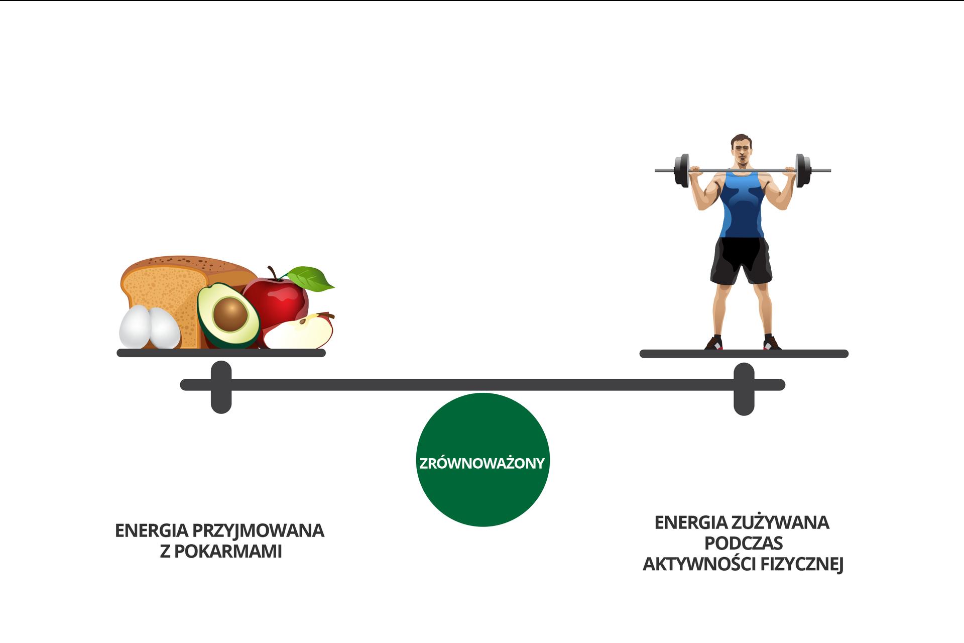 Wgalerii znajdują się plansze, dotyczące bilansowania energii. Rysunek przedstawia poziomo belkę wagi na zielonym kole znapisem: zrównoważony. Zlewej na szali produkty spożywcze: chleb, 2 jajka, kiwi, jabłka. Podpis: energia przyjmowana zpokarmami. Zprawej postać atlety ze sztangą. Podpis: energia zużywana podczas aktywności fizycznej.
