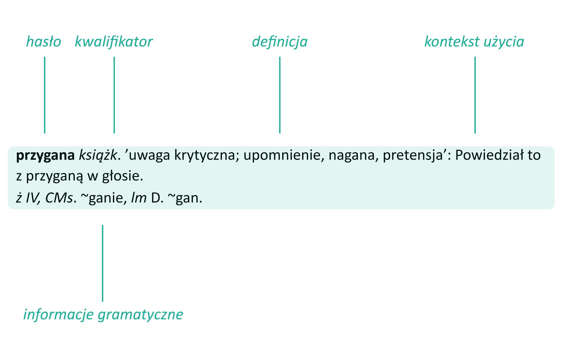 Schemat1 Źródło: Contentplus.pl sp. zo.o., licencja: CC BY-SA 4.0.