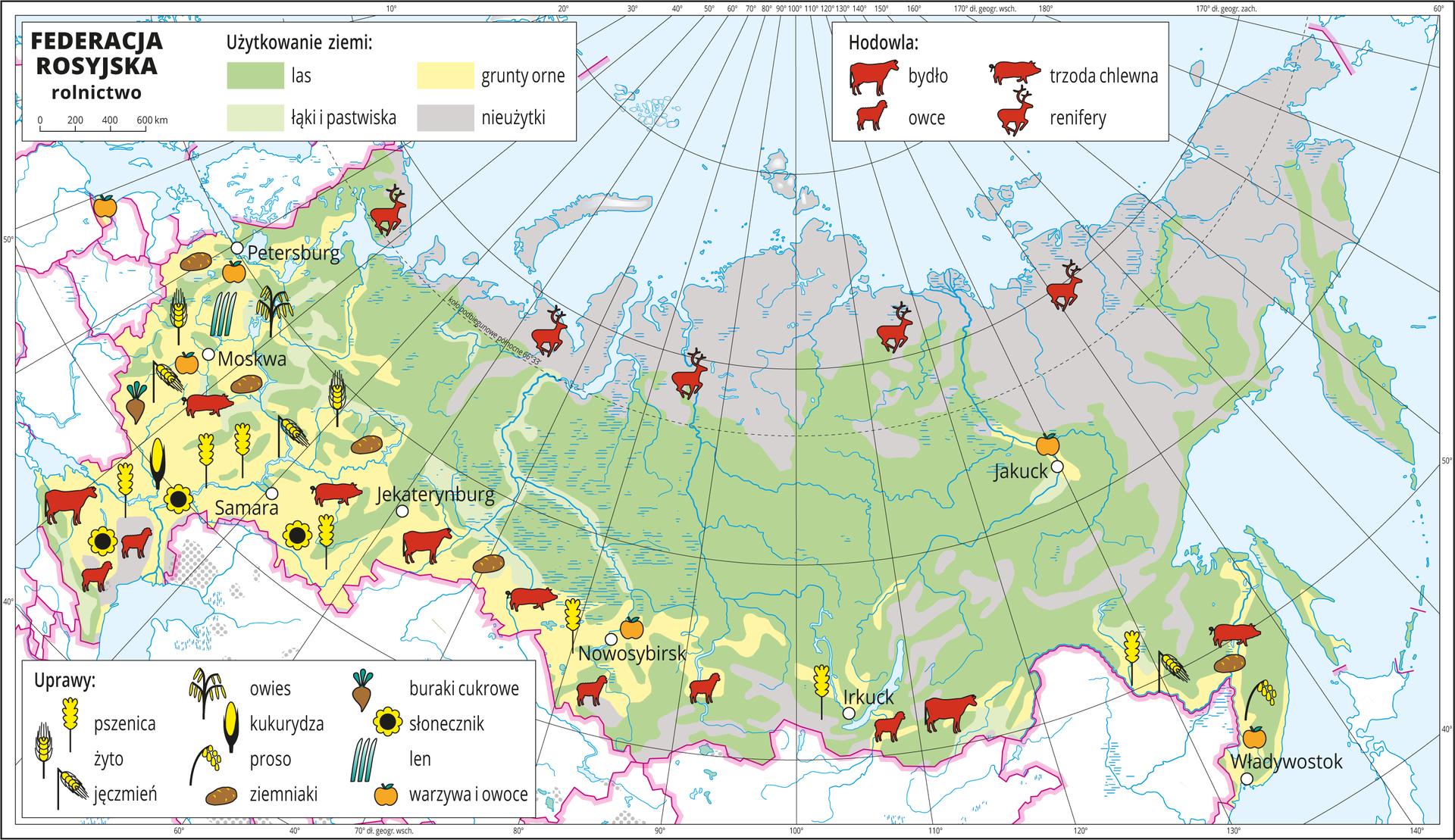 Ilustracja przedstawia mapę gospodarczą Federacji Rosyjskiej. Na mapie rolnictwa kolorem żółtym przedstawiono grunty orne na zachodzie ipołudniu kraju, jasnozielonym – łąki ipastwiska – głównie wzdłuż rzek, zielonym lasy – przewaga na większości obszaru iszarym nieużytki – na północy kraju. Na mapie sygnatury obrazujące uprawy roślin (buraki cukrowe, słonecznik, len, warzywa iowoce, owies, kukurydza, proso, ziemniaki, pszenica, żyto, jęczmień) oraz hodowlę zwierząt (bydło, trzoda chlewna, owce, renifery). Skupione na zachodzie ipołudniu. Na północy jedynie renifery. Mapa zawiera południki irównoleżniki, dookoła mapy wbiałej ramce opisano współrzędne geograficzne co dziesięć stopni.