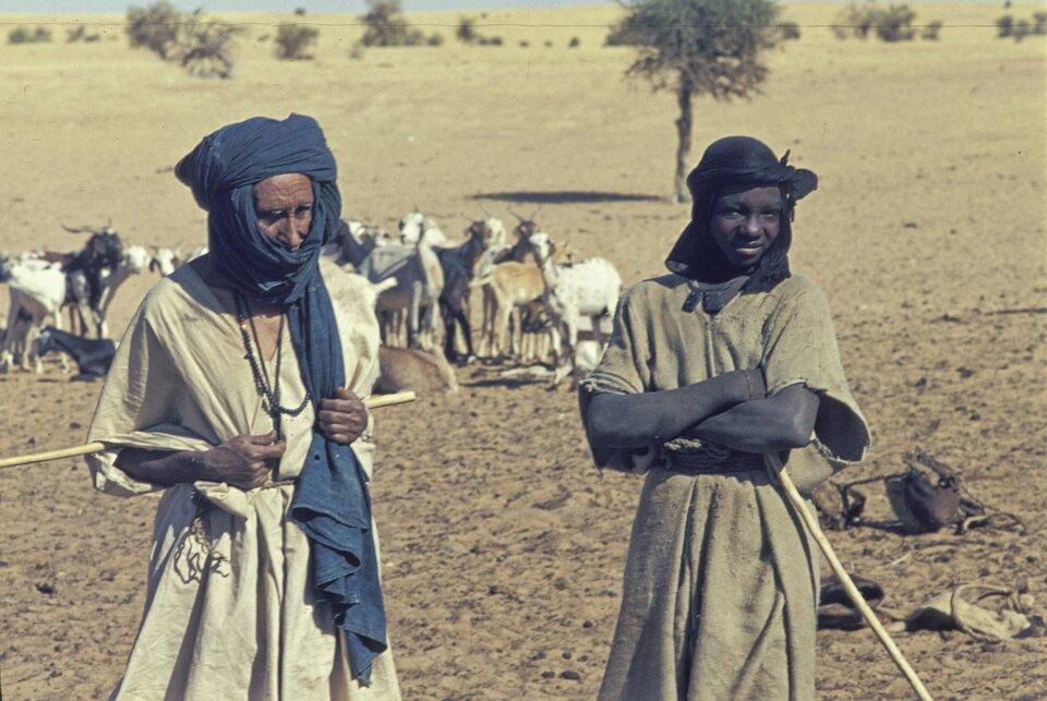 Na zdjęciu pasterze wdługich szatach iturbanach na głowach ze stadem kóz. Ziemia pozbawiona roślinności.