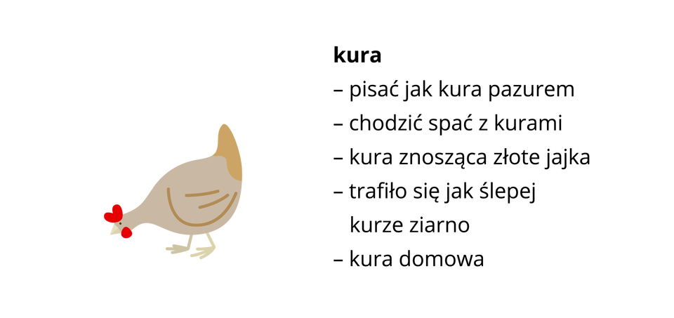 kura ilustracja Źródło: Shutterstock, tylko do użytku edukacyjnego na epodreczniki.pl.