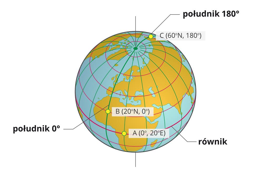 Ilustracja przedstawia kulę ziemską, wokół której zaznaczone są półokręgi południków iokręgi równoleżników. Układ przecinających się linii tworzy siatkę oplatającą kulę. Południki to pionowe linie, łączące dwa bieguny, biegnące po powierzchni kuli ziemskiej. Równoleżniki to poziomie linie tworzące okręgi, ułożone równolegle względem siebie. Pionowa linia południka zero isto osiemdziesiąt stopni jest pogrubiona izielona. Pozioma linia równika jest pogrubiona iczerwona. Na kuli ziemskiej zaznaczono punkty A, BiC. Punkt Ależy na równiku. Punkt Bna południku zerowym, apunkt Cna południku sto osiemdziesiątym. Przy punkcie Ajest opis, że leży on na szerokości geograficznej zero stopni idługości geograficznej wschodniej dwadzieścia stopni. Nie ma określania na jakiej szerokości, północnej czy południowej. Taki zapis jest charakterystyczny dla wszystkich punktów leżących na równiku. Przy punkcie Bjest opis, że leży na długości geograficznej zero stopni iszerokości geograficznej północnej dwadzieścia stopni, aprzy punkcie C, że leży na długości geograficznej sto osiemdziesiąt stopni iszerokości geograficznej północnej sześćdziesiąt stopni. Wprzypadku punktu BiCnie podane jest czy jest to długość wschodnia czy zachodnia. Taki zapis jest charakterystyczny dla wszystkich punktów leżących na południku zerowym isto osiemdziesiątym.