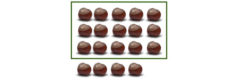Na rysunku 19 kasztanów. Podzielono je na 3 rzędy po pięć kasztanów wkażdym. Zostały 4 kasztany.