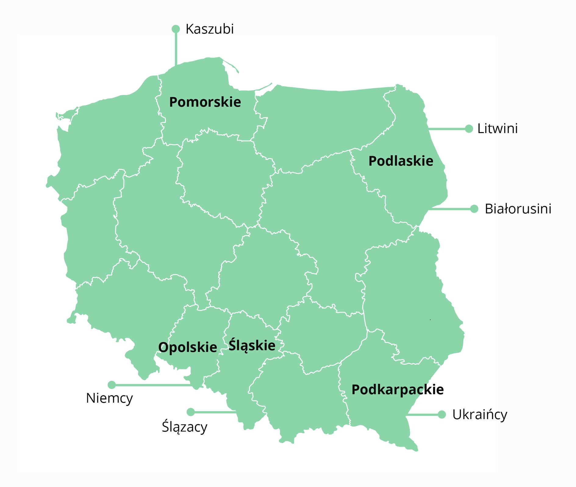 Rozmieszczenie wybranych mniejszości narodowych oraz Kaszubów iŚlązaków wPolsce Rozmieszczenie wybranych mniejszości narodowych oraz Kaszubów iŚlązaków wPolsce Źródło: Contentplus.pl sp. zo.o., licencja: CC BY 3.0.